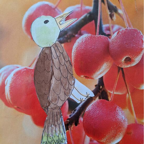 Bird _ Berries