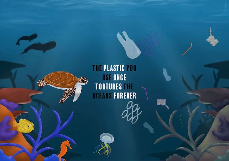 Plastic once tortures forever (1)